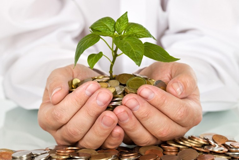 Small Business Ideas With Low Investment Capital