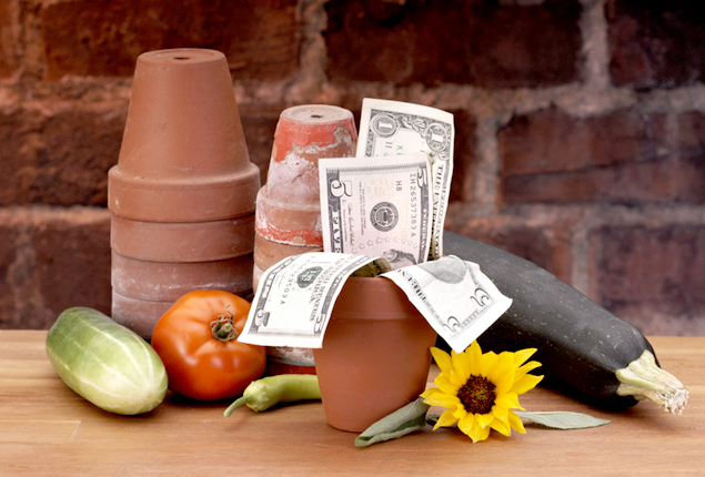 Saving Money On Just About Everything This Spring: The Easy Way